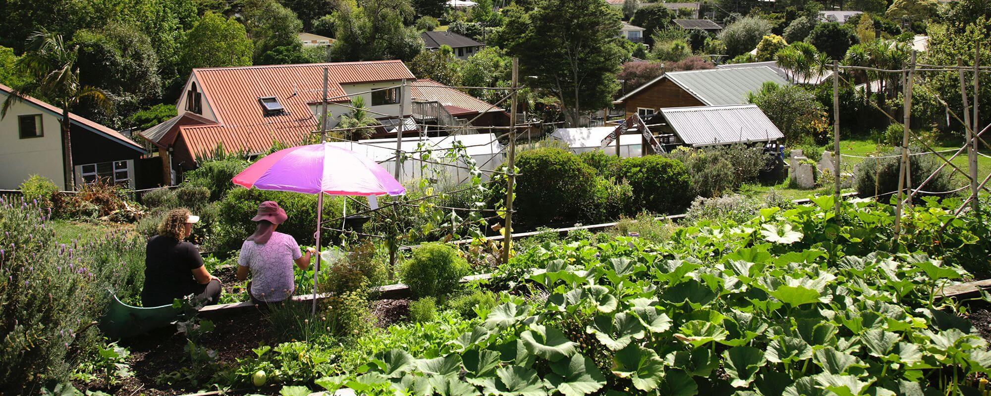 Hohepa Auckland garden view