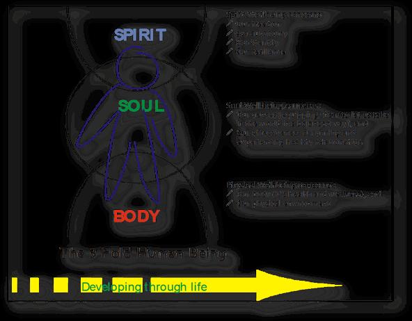 3-fold-human-being-2